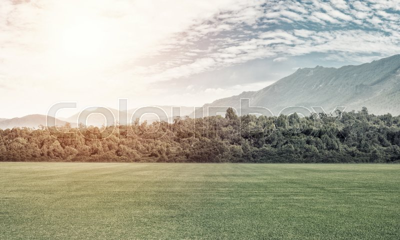 Stock image of 'Natural landscape with green field in lights of summer sun'