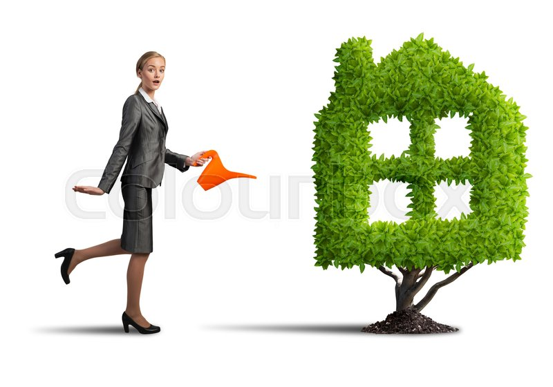 Stock image of 'Young attractive businesswoman watering plant in pot with can on white background'