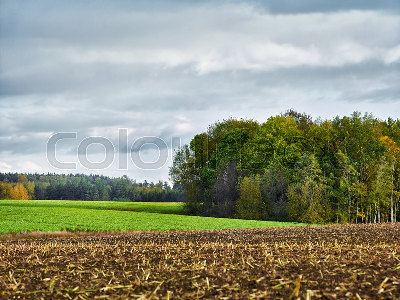 Stock image of 'landscape with fields and clouds, selective focus'