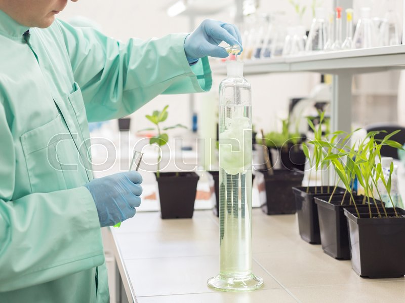 Stock image of 'Lab technician pours liquid in high flask on background of laboratory. Concept: Scientific Research in Biology'