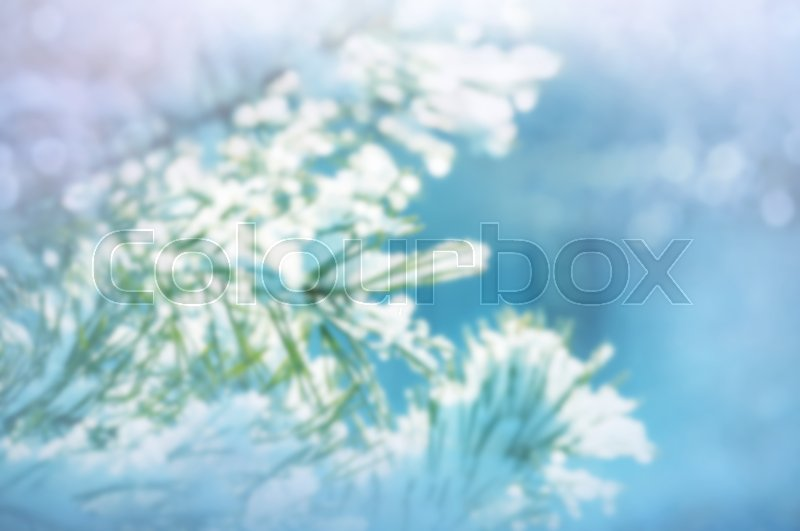 Stock image of 'Picturesque snow-covered forest in the winter'