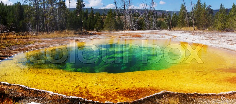 Stock image of 'Colorful Morning Glory Pool - famous hot spring in the Yellowstone National Park, Wyoming, USA'