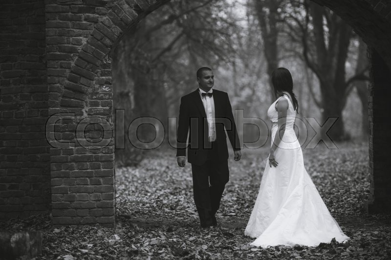 Stock image of 'happy bride and groom walking in the autumn forest'
