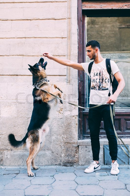 Stock image of 'man is training his dog on the street'