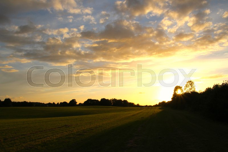 Stock image of 'Sunset over green field in summertime'