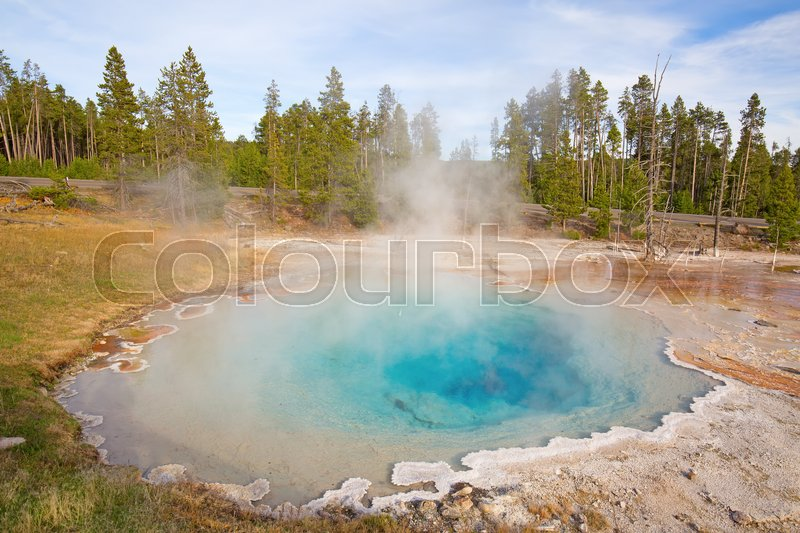 Stock image of 'Colorful hot water pool in the Yellowstone National park, USA'