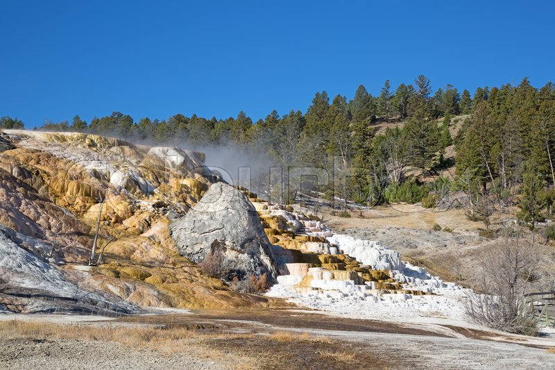 Stock image of 'Mammoth hot springs in the Yellowstone National Park, Wyoming, USA'