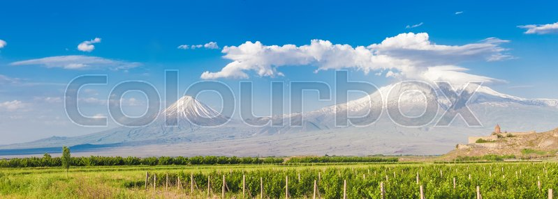 Stock image of 'Grape field in Ararat valley. View of Khor Virap and Mount Ararat. Exploring Armenia'