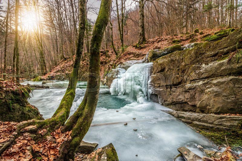 Stock image of 'frozen waterfall over the huge boulder on the river among empty forest with old brown foliage on the ground'