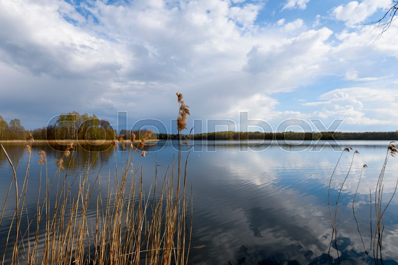 Stock image of 'Early spring landscape with reflection on lake sky and clouds'