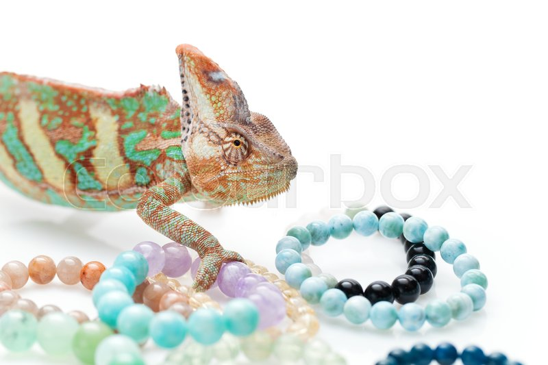 Stock image of 'Beautiful chameleon holding natural stone bracelets over white background. Copy space.'