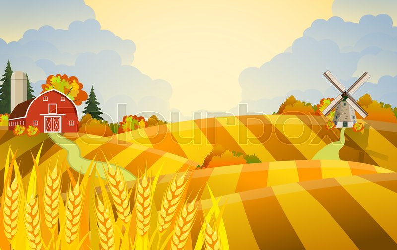 Stock image of 'Cartoon beautiful fall farm scene with wheat fields. Farm flat landscape. Organic food concept for any design Raster version'