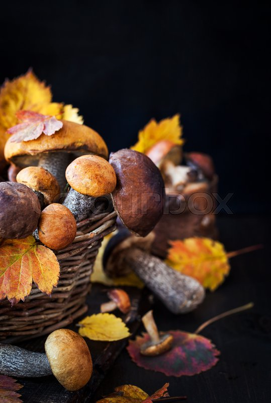 Stock image of 'Autumnal wild forest edible mushrooms (boletus) in basket'