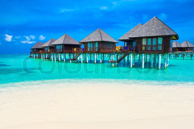 Stock image of 'beach in Maldives with few palm trees and blue lagoon\\ '