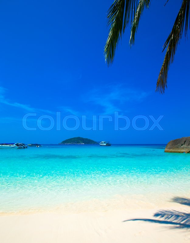 Stock image of 'Beach and tropical sea'