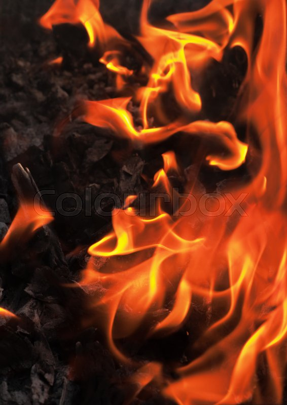 Stock image of 'Fire flame background, wood burning'