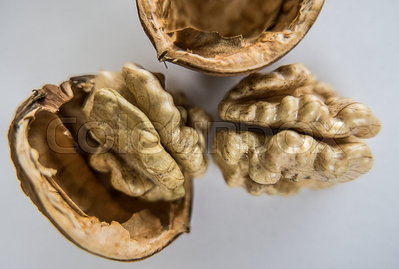 Stock image of 'Walnuts'