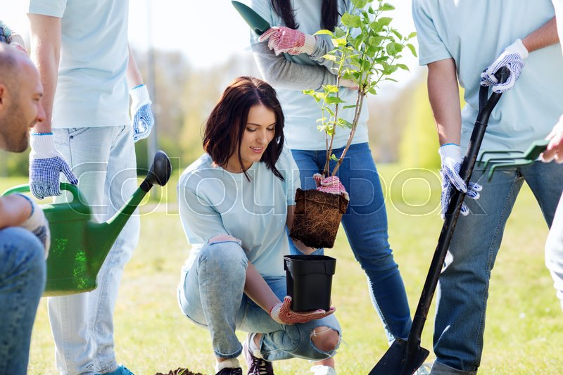 Stock image of 'volunteering, charity, people and ecology concept - group of happy volunteers planting tree and digging hole with shovel in park'