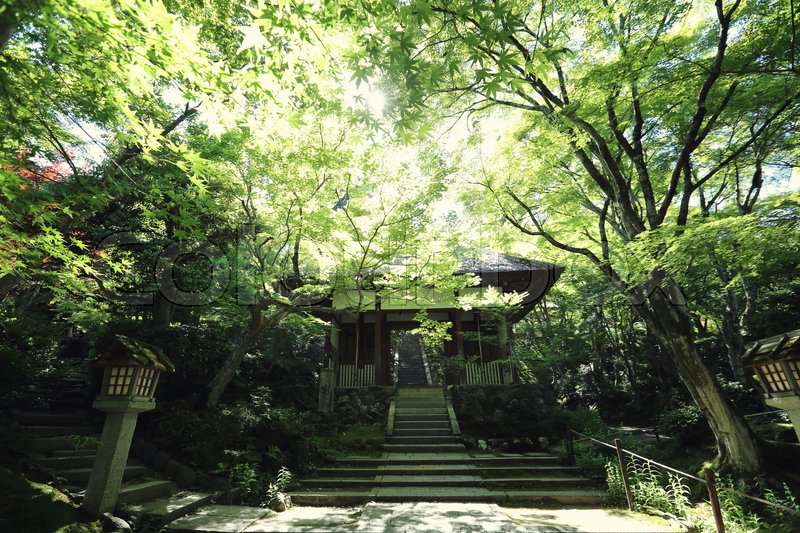 Stock image of 'Japanese temple in garden'