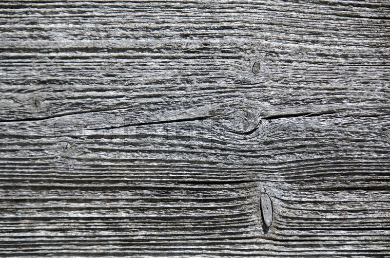 Closeup of a weathered wood surface grey tree structure, stock photo