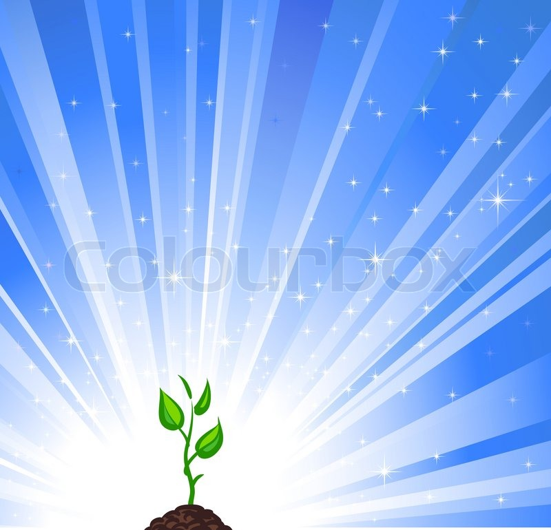 Growing Green Plant And Blue Star Background As A Symbol Of Nature