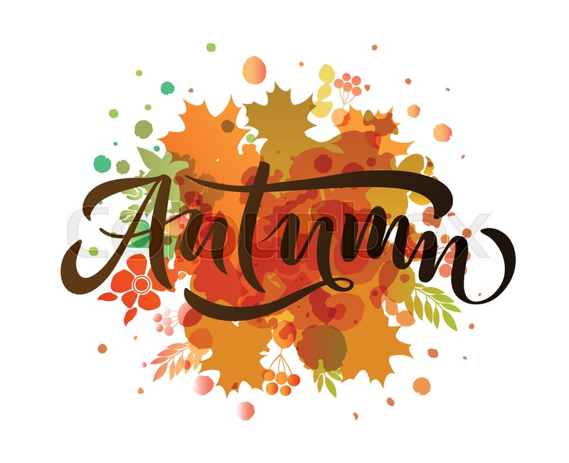 autumn lettering typography  modern