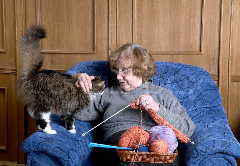 the old woman sits in an armchair and stroke a cat stock