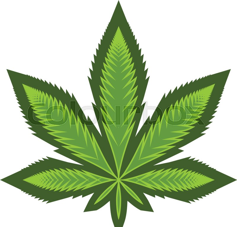 stylized green marijuana pot weed leaf vector logo stock marijuana leaf vector hd marijuana leaf vector file