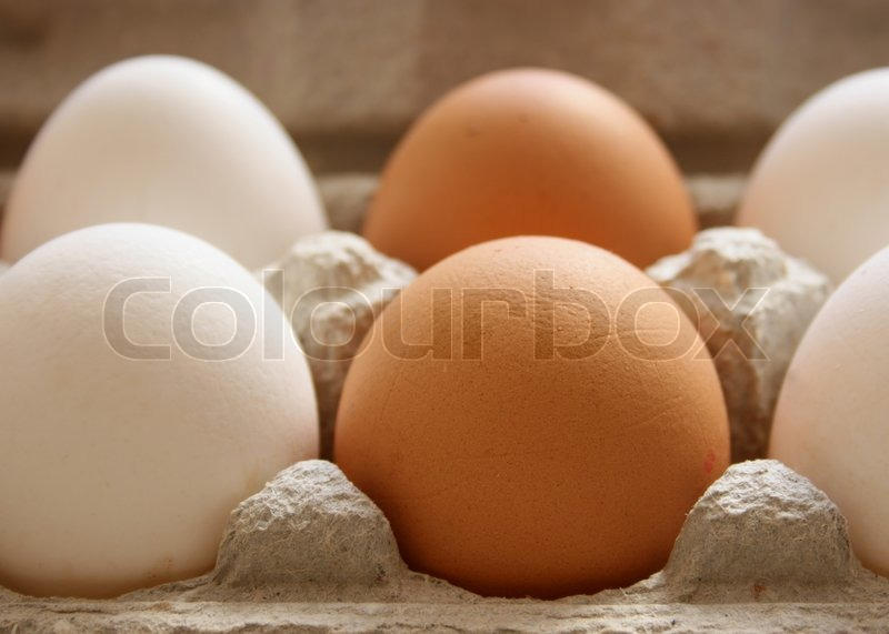 White and brown chicken eggs within carton, stock photo