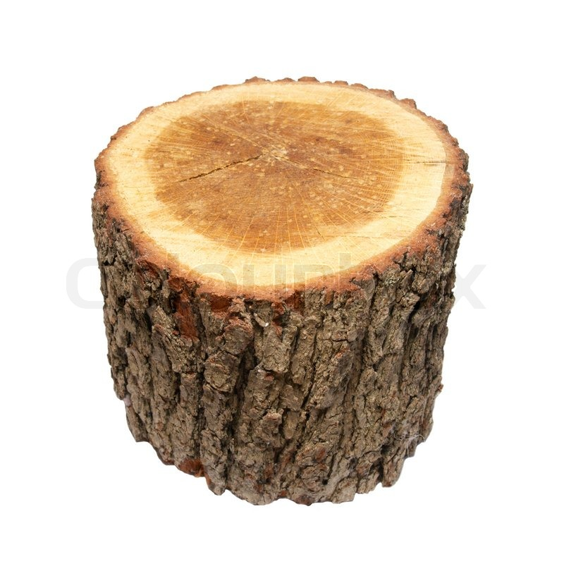 Wooden stump isolated on white. | Stock Photo | Colourbox