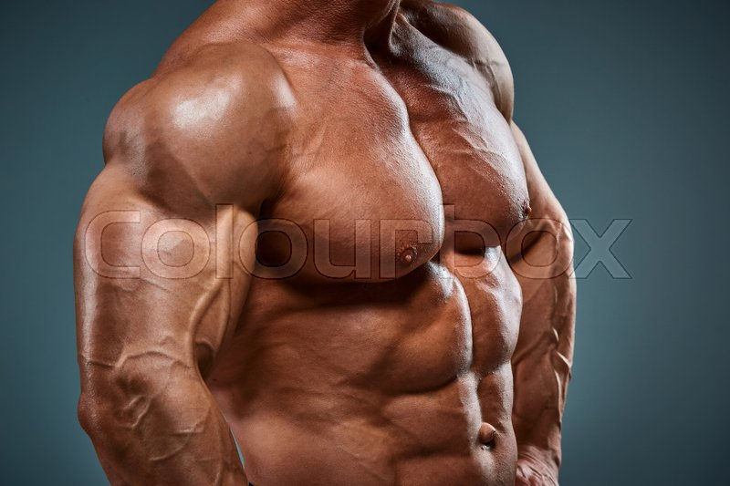 The torso of attractive male body builder on gray background, stock photo