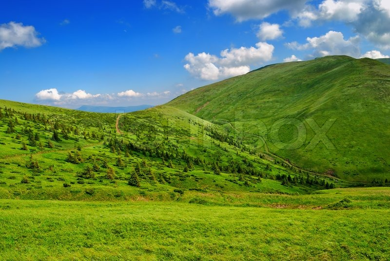 Grass Valley Property Management
