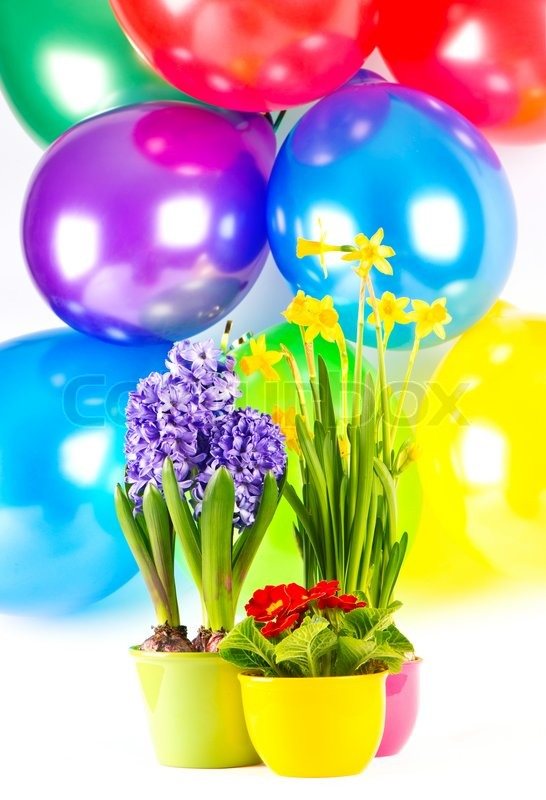Fresh spring flowers and multicolor balloons stock photo colourbox mightylinksfo