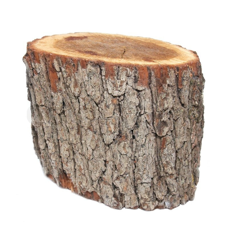 Wooden Stump Isolated On The White Background Stock
