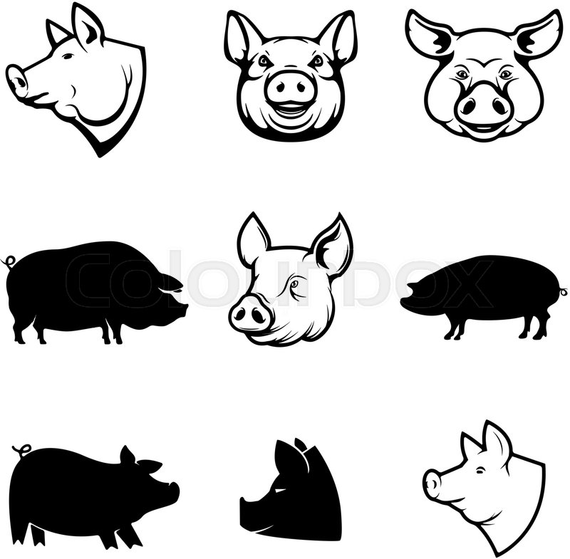 Set of Pork labels  Pig silhouettes     | Stock vector | Colourbox