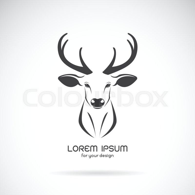 Vector Image Of A Deer Head Design On White Background Vector Deer