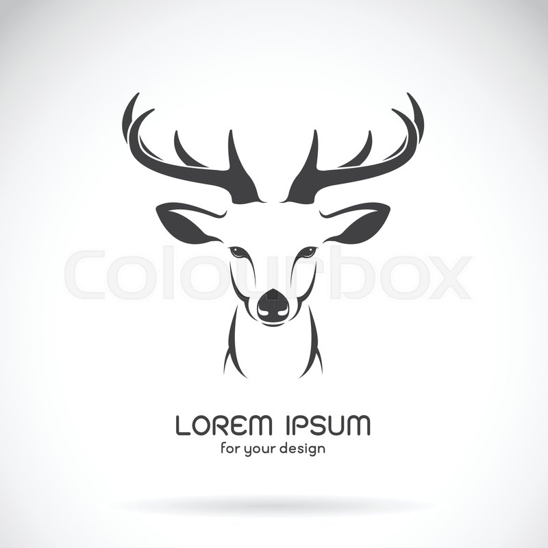 Vector image of a deer head design on white background, Vector deer ...