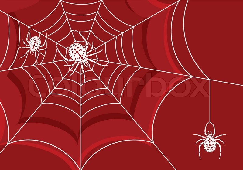 background with web and spider element for design vector