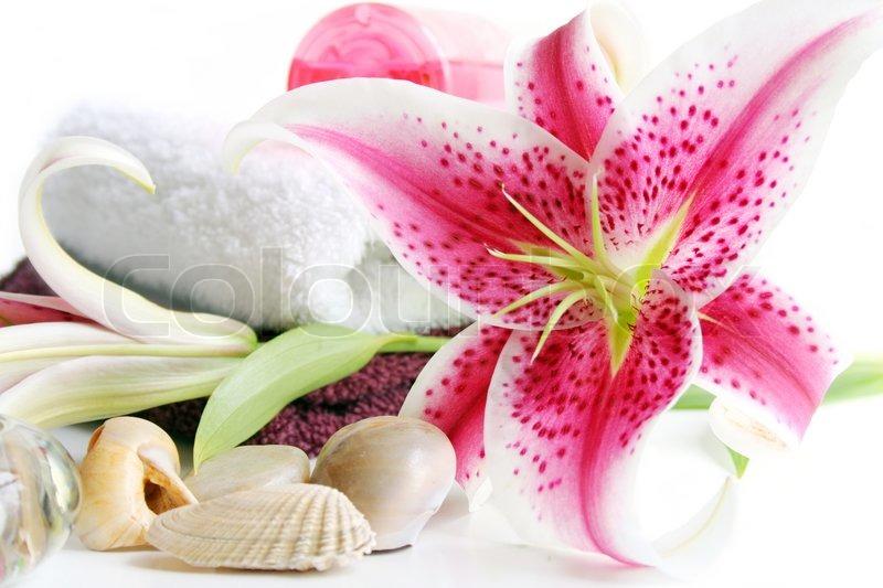 spa szene mit handt chern muscheln und sch ne rosa stargazer lily stockfoto colourbox. Black Bedroom Furniture Sets. Home Design Ideas