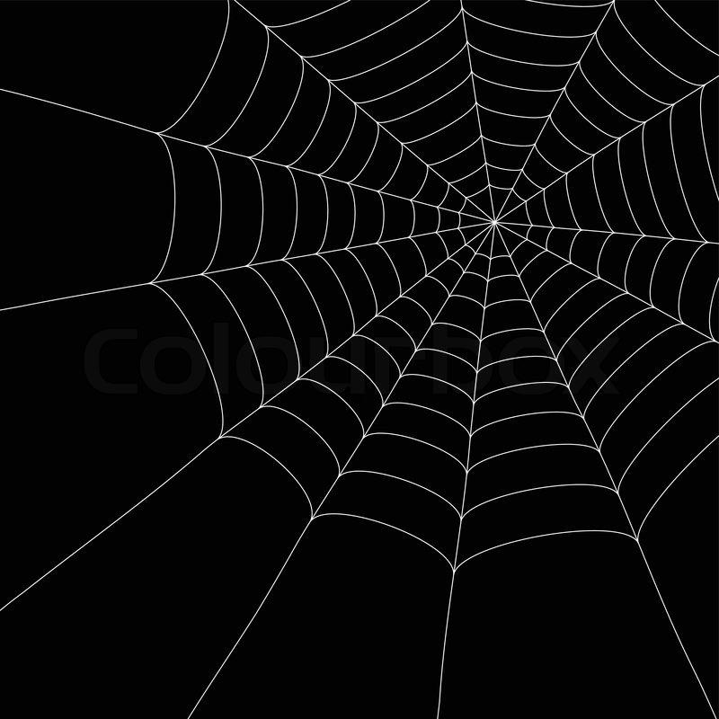 weißen spinnennetz auf dem isolierten  vektorgrafik