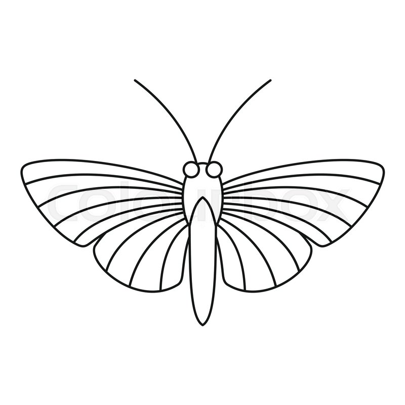 Hawk moth butterfly icon. Outline illustration of hawk moth ...