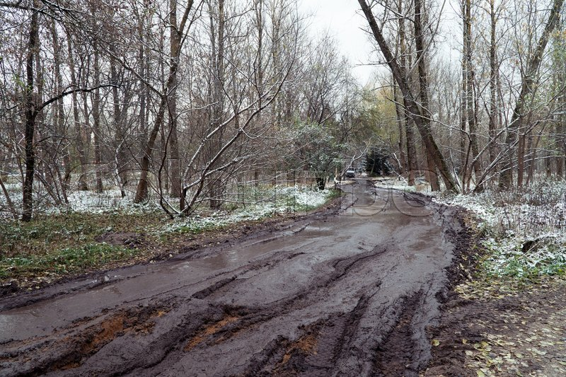 mud rutted road in the autumn forest stock photo colourbox