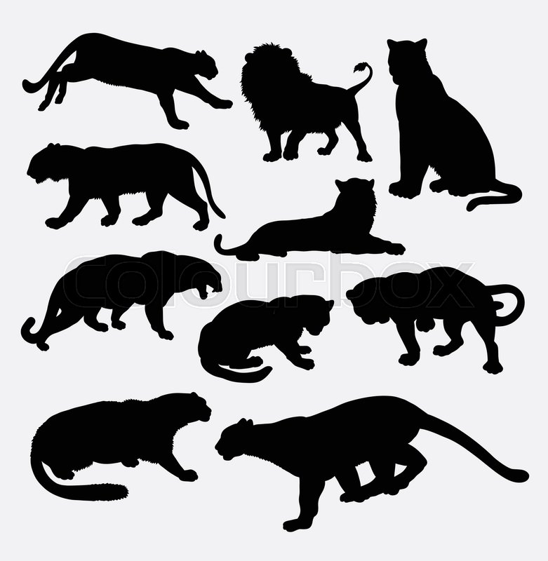 cheetah panther leopard lion and tiger wild animal silhouette