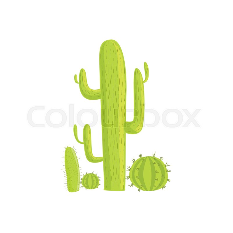 Cacti Mexican Culture Symbol Isolated Bright Color Vector Object