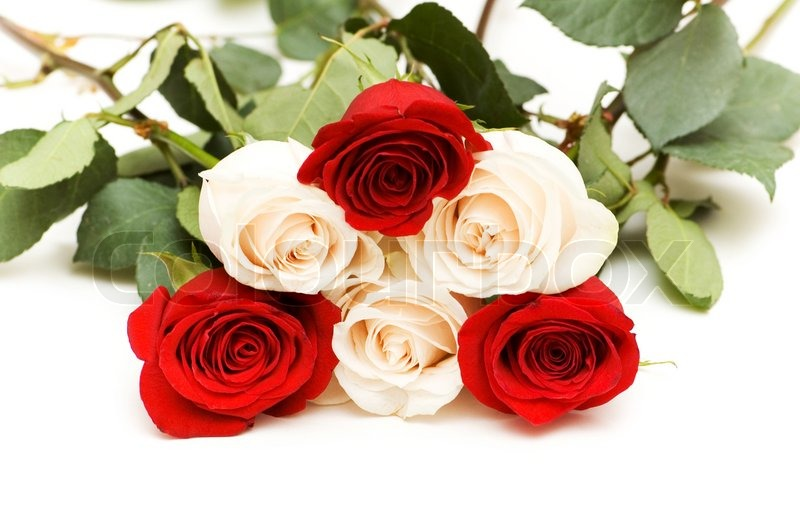 """How many roses u need to express """"Together as long as we live ..."""