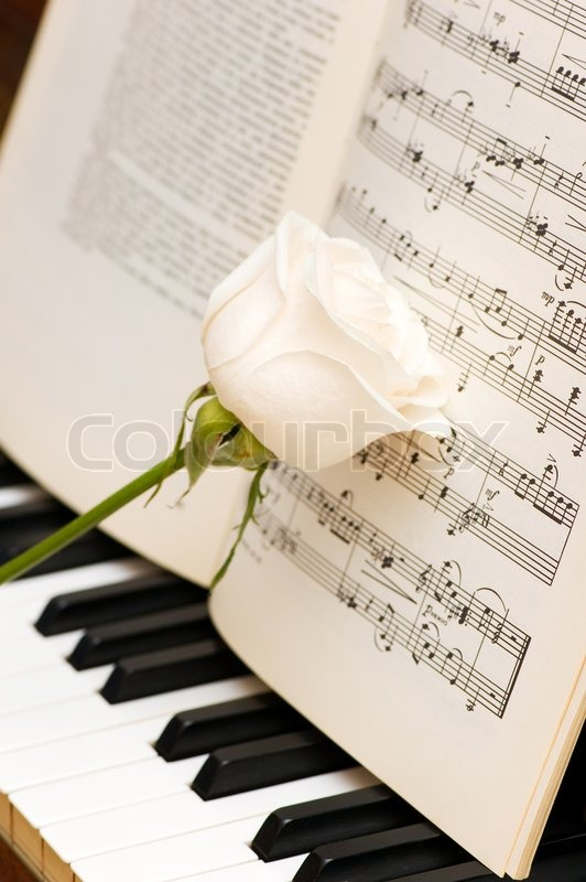 White rose over music sheets and piano keys | Stock Photo ...