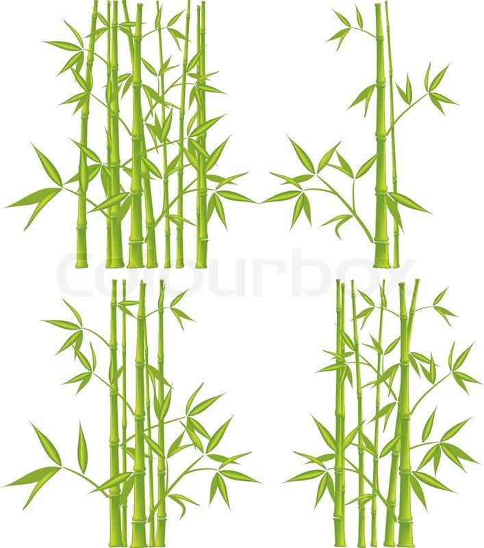 Bambus Vektor Illustration Mesh Vektorgrafik Colourbox
