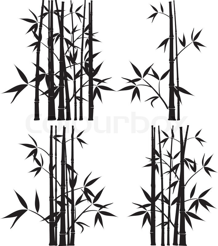 Bamboo Art Design : Bamboo vector illustration stock colourbox