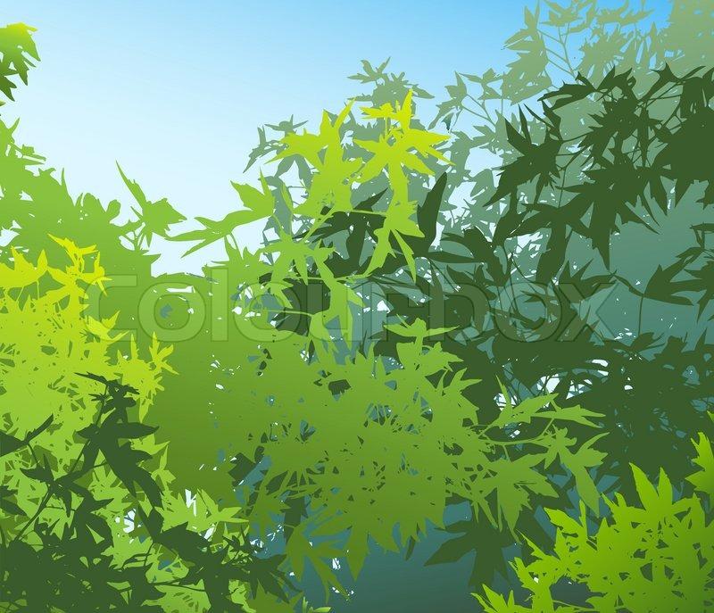 4113cac1 Farverige landskab af sommeren løv - ... | Stock vektor | Colourbox
