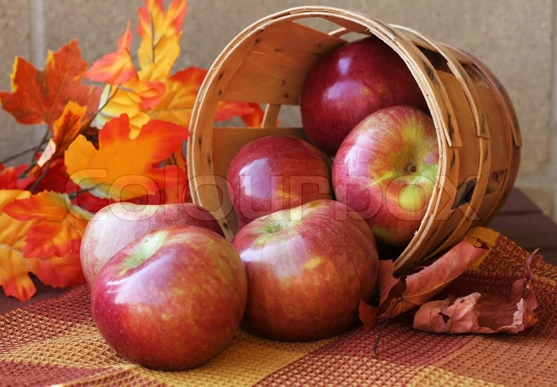http://www.colourbox.com/preview/2266171-197852-red-apples-and-autumn-leaves.jpg
